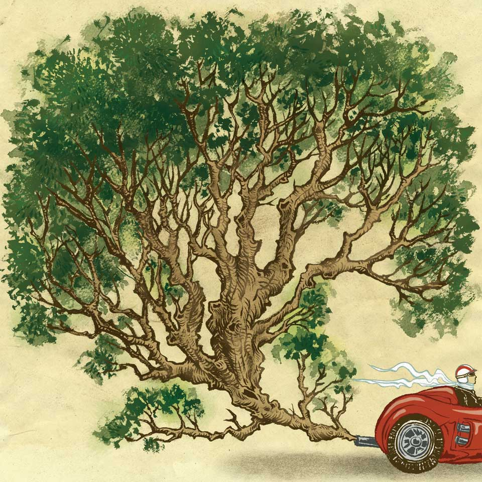 Outside Magazine: Eco car